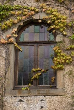 Stained glass window in old house  with Virginia creeper