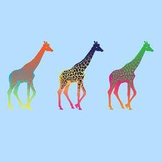 Giraffe Wallpaper! I love giraffes!
