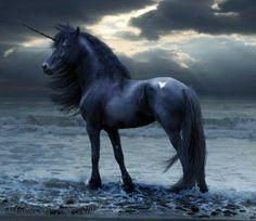 Black Unicorn :)