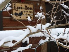 It's beginning to look like a winter wonderland with all the new snow on the ranch!