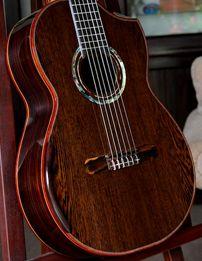 Classical Acoustic Guitar, Acoustic Guitars, Guitar Building, Cool Guitar, Acoustic Guitar