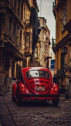 [ Volkswagen Beetle ]