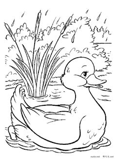 Nice drawing of a duck wading in a pool, to color - Nice drawing of a duck wading in a pool, to color - Art Drawings For Kids, Bird Drawings, Drawing For Kids, Animal Drawings, Cute Drawings, Bunny Coloring Pages, Spring Coloring Pages, Colouring Pages, Coloring Books