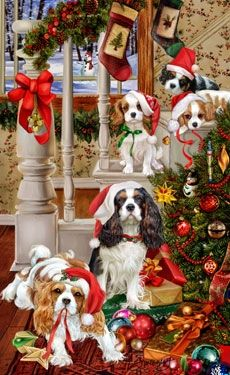 "Cavalier King Charles Christmas cards are 8 1/2"" x 5 1/2"" and come in packages of 12 cards. One design per package. All designs include envelopes, your personal message, and choice of greeting.Select your inside greeting from the menu below.Add your personal message to the Comments box during checkout."