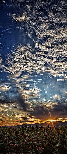 Vertical Panoramic Sunset , west of Phoenix, Arizona.