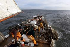 Nothing defines Maryland quite so much as the Chesapeake Bay. With fishing, shipping, boating and tourism, the largest estuary in the United States has been the commercial and cultural lifeblood of the state for centuries. Witness the famous Maryland blue crab, a staple of menus -- and license plates -- across the Mid-Atlantic. | 50 states, 50 spots: Natural wonders - CNN.com