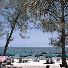 Don't miss visiting Fort Zachary Taylor State Park. It has the nicest beach in Key West. #KeyWest #Beaches #Travel