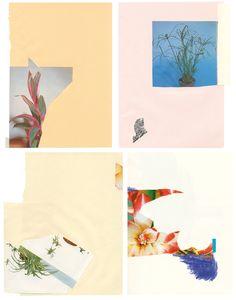 ARTING // Rosemarie Auberson