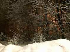 Hohle Gasse nachts und bei Schneefall Wilhelm Tell, Winter, Snow, Outdoor, Winter Time, Outdoors, Outdoor Living, Garden, Eyes