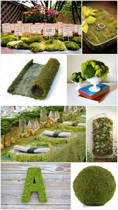I am likin this moss stuff  AOII in moss with fake flowers