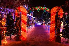 Outdoor Christmas decorations and lights