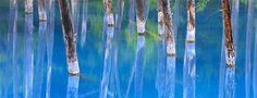 Étang bleu de Biei, Hokkaidō, Japon