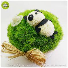 お昼寝バージョン!ピンポンマム(菊の花)で出来たパンダのフラワーアレンジメント。Cute! An animal doll made with chrysanthemums.