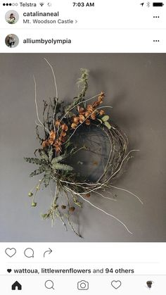 Diy Wreath, Grapevine Wreath, Wreaths, Front Door Decor, Dried Flowers, Holiday Crafts, Grape Vines, Winter Wonderland, Projects To Try
