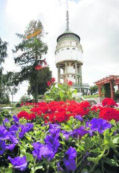 Naisvuoren näkötorni ja puistoalueet Mikkeli