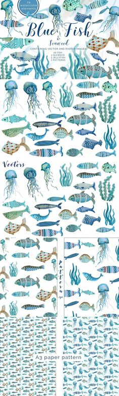 Blue Fish Set with . Pattern Vectors