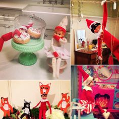"Donut stealing, jewelry heisting, fire warming elves are everywhere! ""What would the elf say?"""