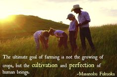 """""""The ultimate goal of farming is not the growing of crops, but the cultivation and perfection of human beings""""- Masanobu Fukuoka #agriculture #quote"""