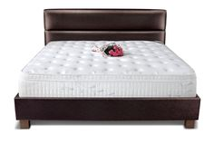 The Springwel Celeb Latex Foam Mattress is a high-end offering from Springwel, designed for luxury and comfort. The fusion of pocket springs and latex provide firm support, with a soft surface feel. http://www.fabmart.com/collections/springwel-luxury-mattress/products/springwel-talalay-latex-foam-pocket-spring-mattress-fusion