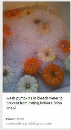 white wash pumpkins