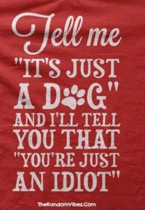 Dog Best Friend Quotes with Images
