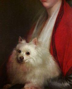 Detail of portrait of Izabela Ogińska, née Lasocka with a dog by Élisabeth Vigée-Lebrun, ca. Museum of Warsaw. Female Painters, Elisabeth, Warsaw, Pomeranian, Portrait, Museum, Detail, Dog, Animals