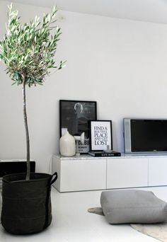 fernsehschränke pflanzen zimmer wohnzimmer gestalten ideen