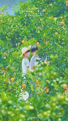 2 người đẹp lạc giữa vườn cam