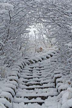 Winter white stairways - bring it on! Winter Szenen, I Love Winter, Winter Magic, Winter Christmas, Prim Christmas, Christmas Morning, Winter Travel, Foto Picture, I Love Snow