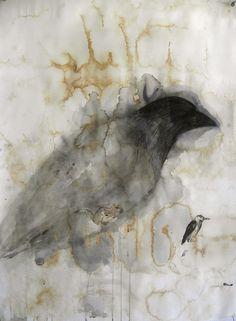 Jane Rosen - Drawings - Bird Studies Raven