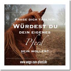 Würdest Du Dein eigenes Pferd sein wollen? www.wege-zum-pferd.de