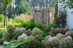 Projektowanie ogrodów, architektura krajobrazu - Pracownia Sztuki Ogrodowej