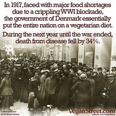 """2,088 Likes, 21 Comments - Vegan Street (@veganstreet) on Instagram: """"A nation deals with food shortages by feeding everyone a vegetarian diet, and suddenly disease…"""""""