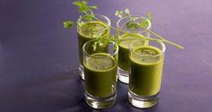 Únete al reto del 'Vaso Verde' y pierde un 1 kilo de grasa por día | i24Web