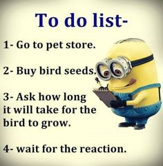 Funny Minions to do list, bird seed.   。◕‿◕。 See my Despicable Me  Minions pins https://www.pinterest.com/search/my_pins/?q=minions  - Michael Eric Berrios DJMC -