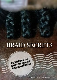 This guide gives you the knowledge to create perfect hunter braids and the best mane & tail care. It features a picture tutorial of pro braiding steps & secrets. Great for use on your phone. Click through to learn more now. Available for instant download after purchase.