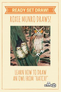 KidLit TV's Ready Set Draw Series featuring author/illustrator Roxie Munro  Owl from Hatch!