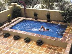 Swimming pool designs featuring new swimming pool ideas like glass wall swimming pools, infinity swimming pools, indoor pools and Mid . Garden Swimming Pool, Small Swimming Pools, Swimming Pool Designs, Indoor Swimming, Endless Swimming Pool, Lap Pools, Indoor Pools, Small Inground Pool, Small Backyard Landscaping