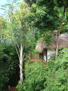 Nandini Ubud, Bali
