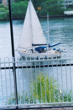 Sailing off in front of our place, Hawthorne, 2006