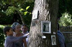 Réunir les photos des couples mariés dans des cadres à accrocher sur les arbres