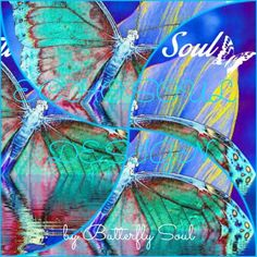 Check out my new PixTeller design! :: Echo soul design by butterfly soul
