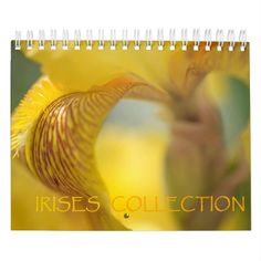 Shop Irises Collection Calendar created by JennyRainbow. Celebration Song, Spring Plants, Bearded Iris, Iris Flowers, Buy Art Online, Magic Carpet, Pet Home, Irises, Gifts For Family