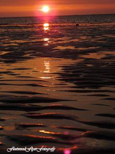 JPG: Lightbox: WEDNESDAY SUNSET ON OUR BEACH#2