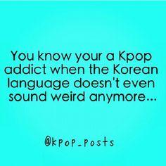 kpop addict, I need to learn Korean! Kdrama Memes, Bts Memes, Fangirl Problems, Korean Language, I Can Relate, Pop Music, Kpop Groups, Bigbang, Shinee