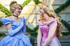 Princess Cinderella, Princess Aurora