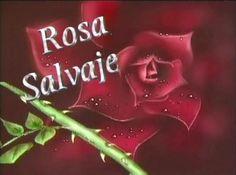 Rosa Salvaje!!!