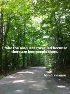 I take the road less travelled because there are less people there. Introverts are Awesome!