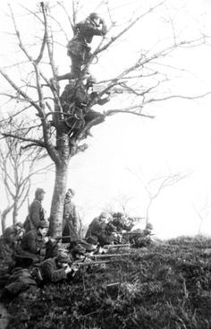 French troops man a lookout in France during a battle in the Argonne Forest during World War One.