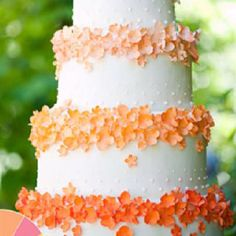 ribbon around each layer or under each band of flowers Brides Magazine: Summer Wedding Colors: Pink, Peach, Yellow : Wedding Cakes Gallery Fancy Cakes, Cute Cakes, Pretty Cakes, Pink Cakes, Summer Wedding Colors, Orange Wedding, Summer Weddings, Spring Wedding, Pink Summer
